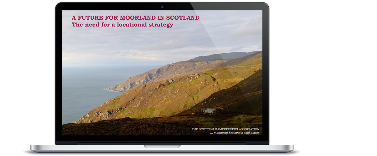 A Future for Moorland in Scotland